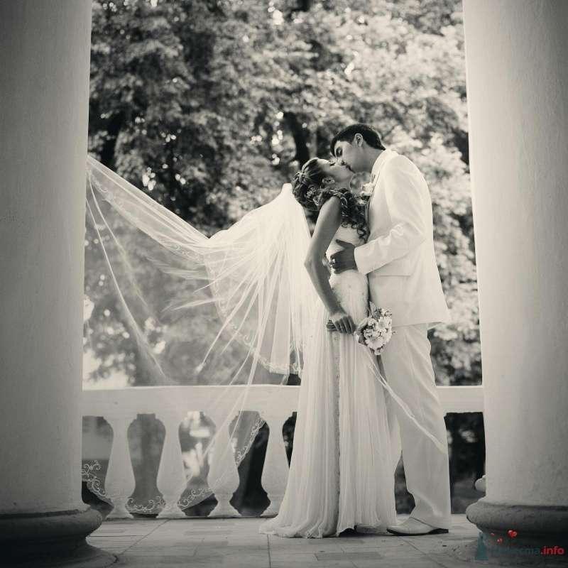 Фото 52996 в коллекции свадьба... - AngeLady