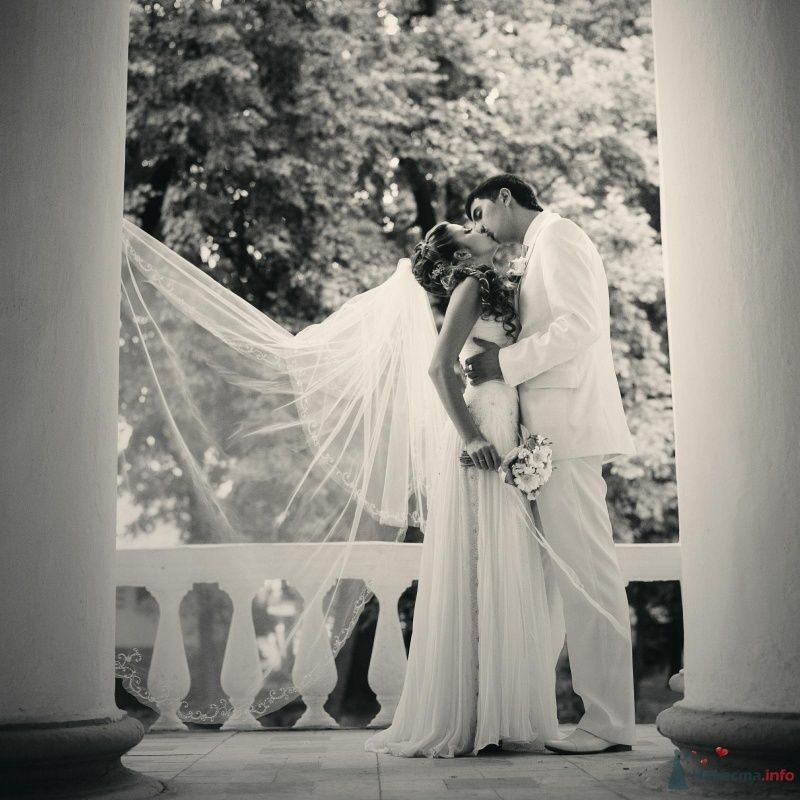 Фото 52996 в коллекции свадьба...