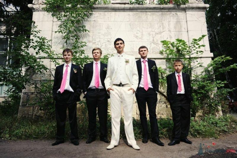 Друзья жениха в белых рубашках с розовыми галстуками, черных - фото 53010 AngeLady