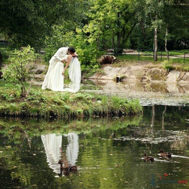 Жених и невеста стоят, прислонившись друг к другу, у пруда