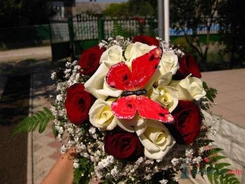 Фото 3289 - Невеста01