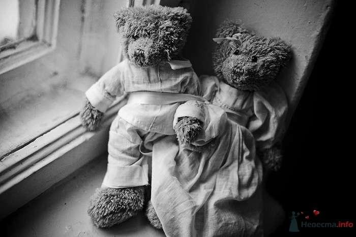 Плюшевые медведи Теди для оформления фотосессий - фото 43779 Невеста01