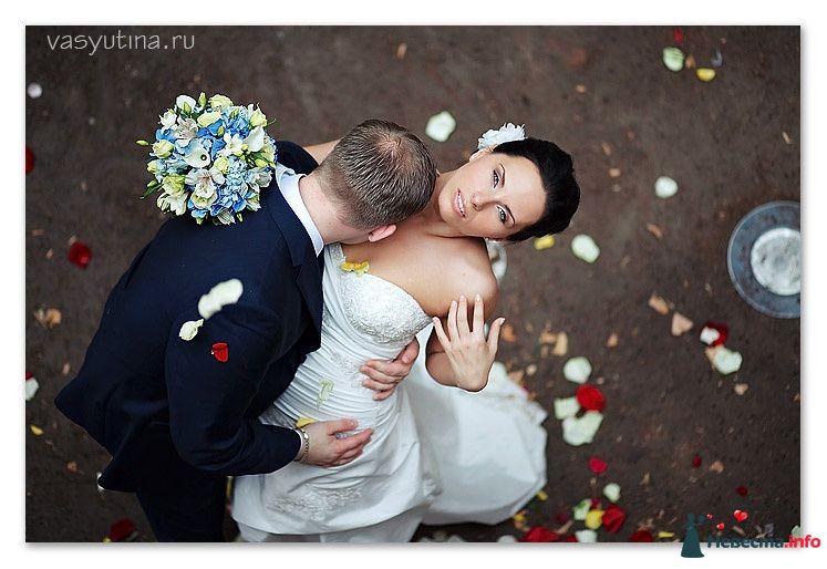 Фото 123418 в коллекции Свадьбы - Фотограф Таня Якуб