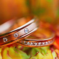 свадебные кольца. фотограф Таня Якуб