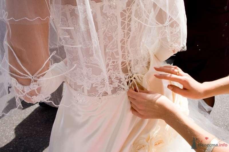 Фото 37848 в коллекции Wedding/Lovestory album - Невеста01
