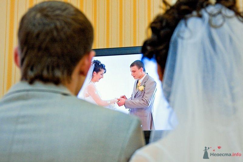 Фото 38281 в коллекции Свадьба