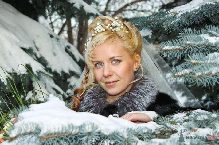 Фото 57280 в коллекции Свадьба (фото на Поклонке) - Лёлечк@