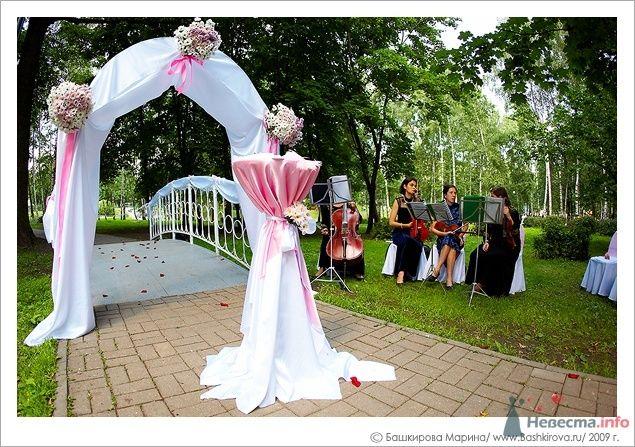 Подковообразная арка с композицией из живых цветов, задрапированная - фото 41203 Мissis Kейт