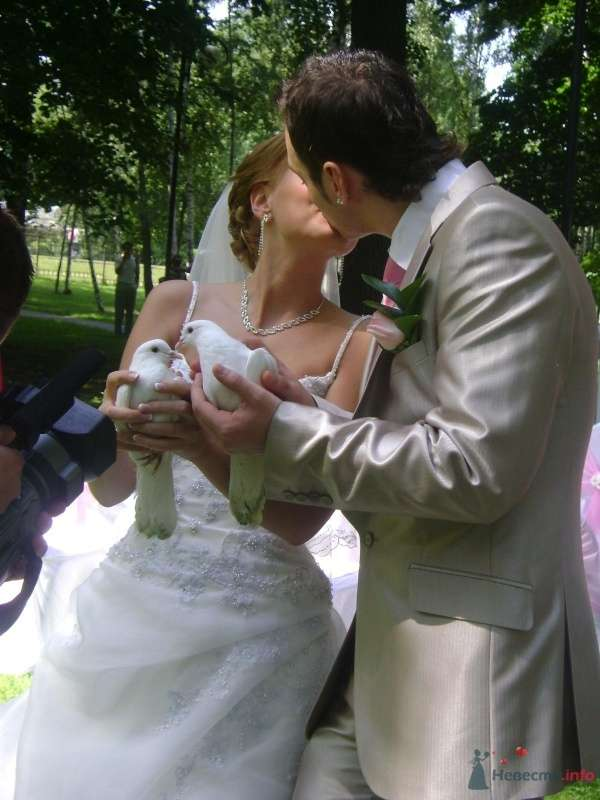 Фото 51245 в коллекции Свадьба - любительские фото - Мissis Kейт