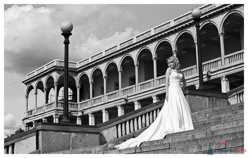 Фото 39882 в коллекции Свадебные зарисовки - Gennadiy
