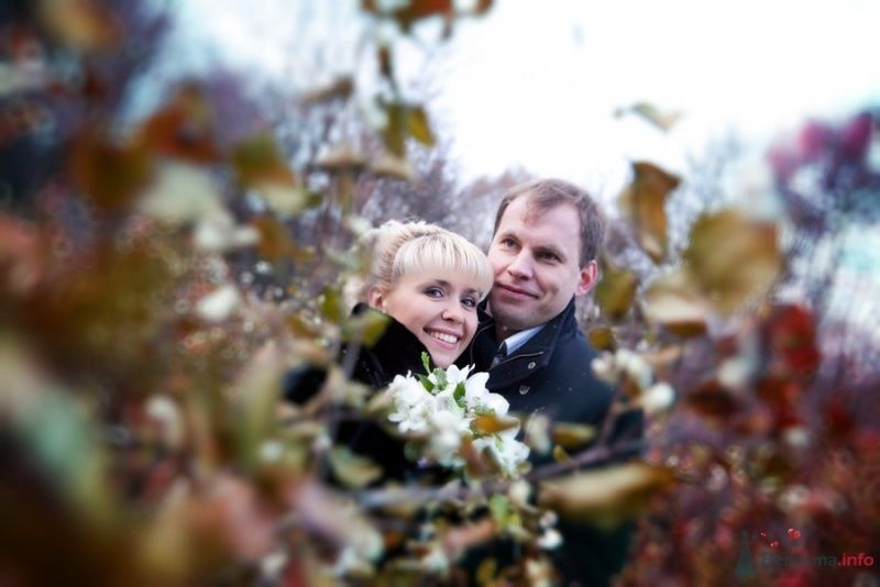 Фото 50549 в коллекции наша свадьба- 31 октября 2009 - Oblachko80