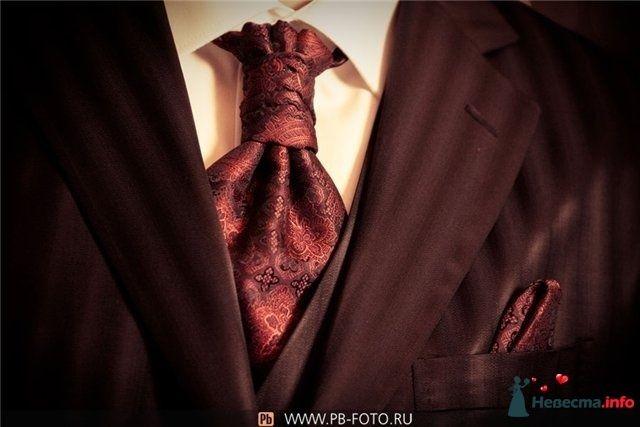 Фото 82585 в коллекции Мои фотографии - Camel Maschine
