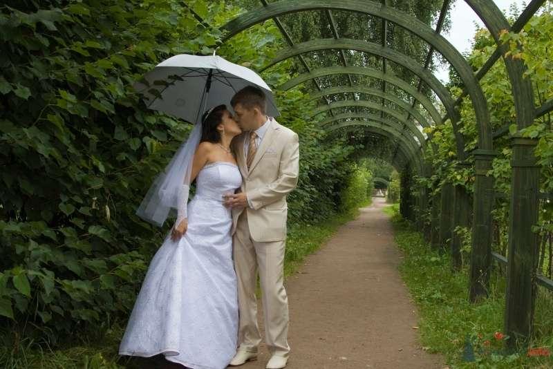 Фото 44330 в коллекции Свадебные фотографии - Щеглов Юрий - фотограф