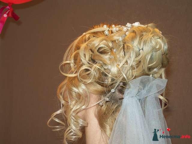 Фото 92049 в коллекции Мои фотографии - Невеста01