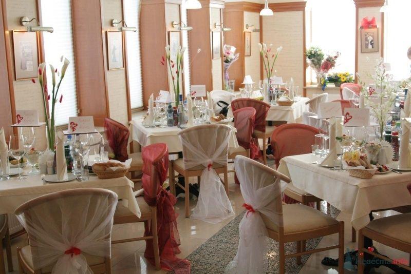 Красно-белое оформление ресторана Beerократия - фото 44111 Невеста01