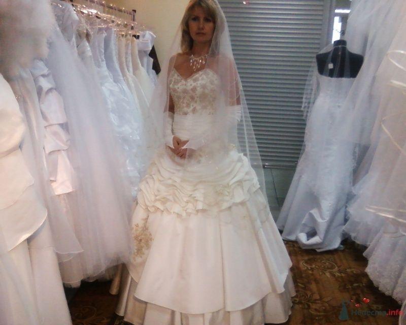в поиске... - фото 69200 Невеста Волкодава