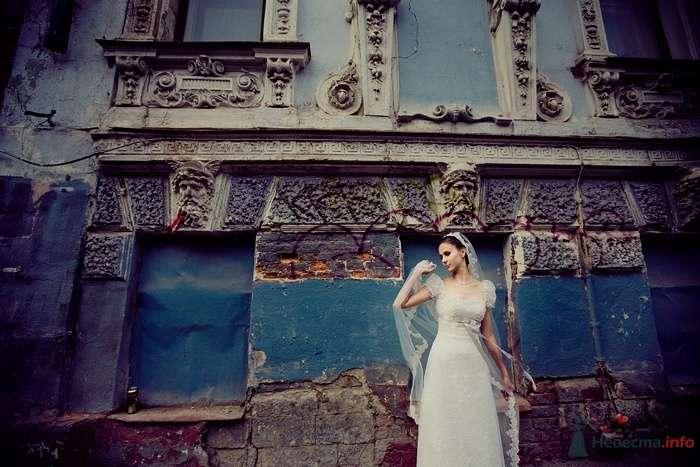 010 - фото 44289 Екатерина Алёшинская