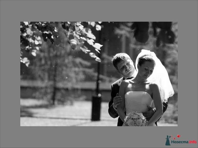 Фото 91193 в коллекции Свадебное фото - Фотограф Максим Корогодский