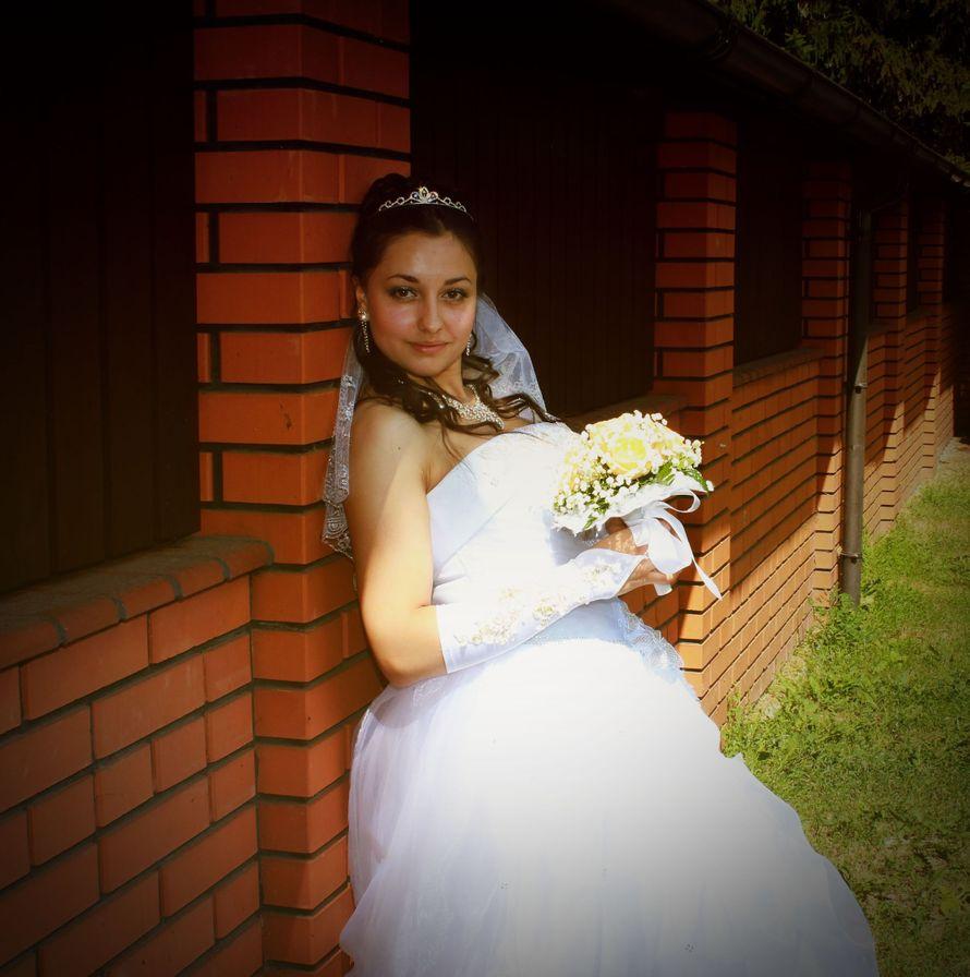 Фото 16011512 в коллекции фотогалерея. - Фотограф и видеограф Шевелев Николай