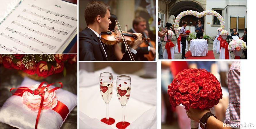 Фото 630767 в коллекции Nadeghda - Конкурс фото «Свадьба моей мечты» - Nevesta.info - модератор
