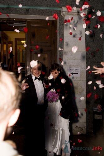 Фото 8741 в коллекции свадьба - Танюшка