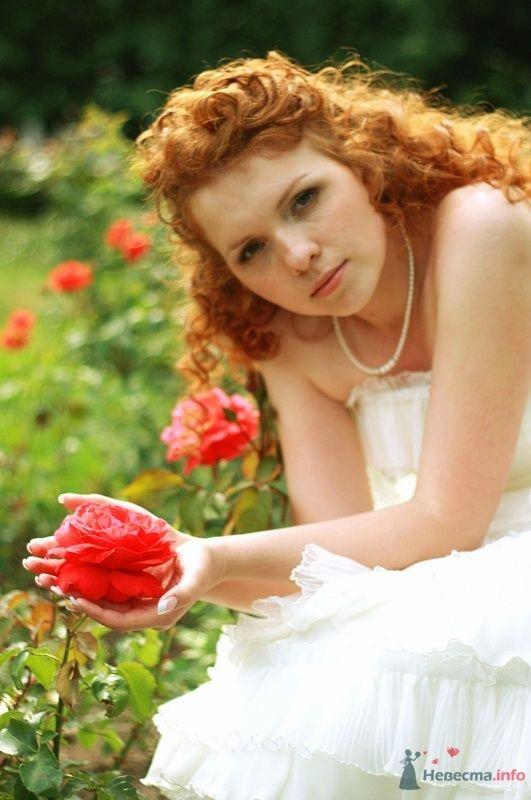 Фото 58761 в коллекции Свадьба - darrana
