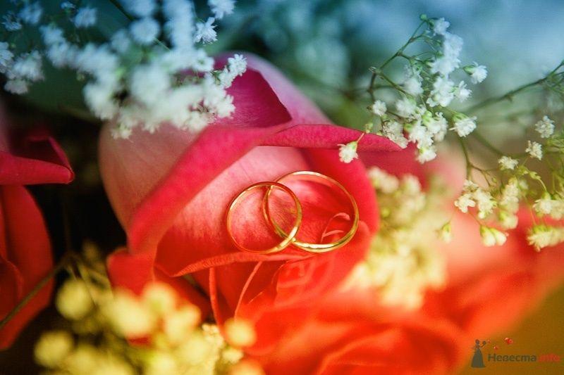 Фото 52917 в коллекции Свадебные фотографии - Невеста01