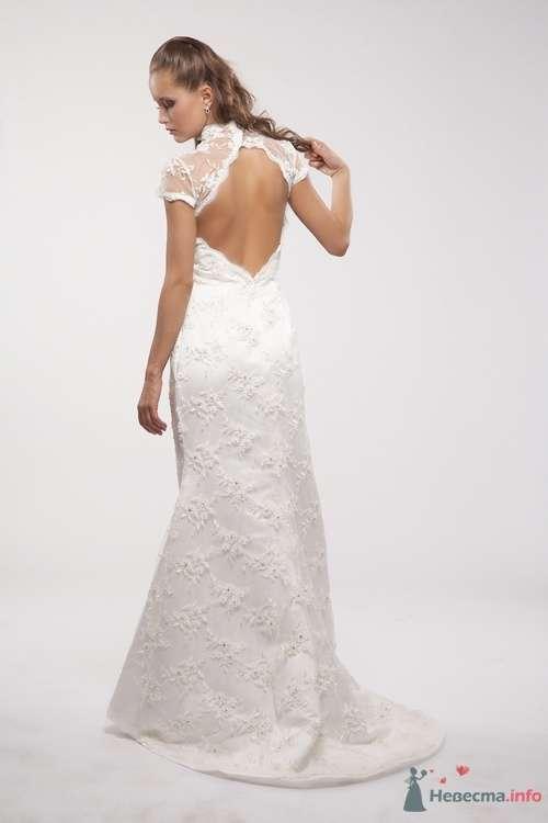 Платья - фото 48204 Catherin