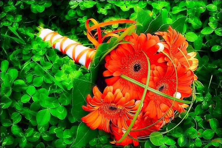 Оранжевый букет невесты из гербер - фото 57239 Catherin