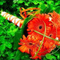 Оранжевый букет невесты из гербер