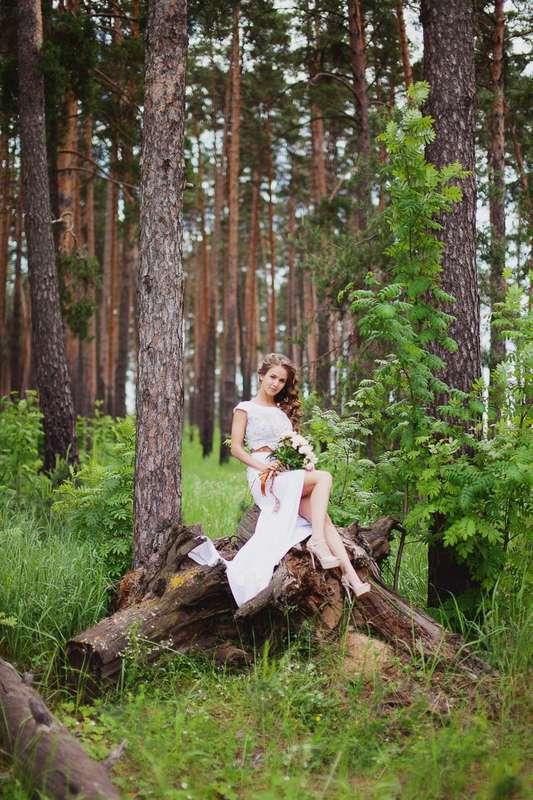 Фото 16521754 в коллекции Портфолио - Фотограф Алексей Камардин