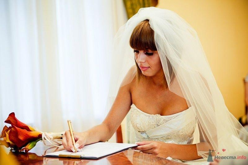 Фото 61788 в коллекции Моя оранжевая свадьба - yanechka