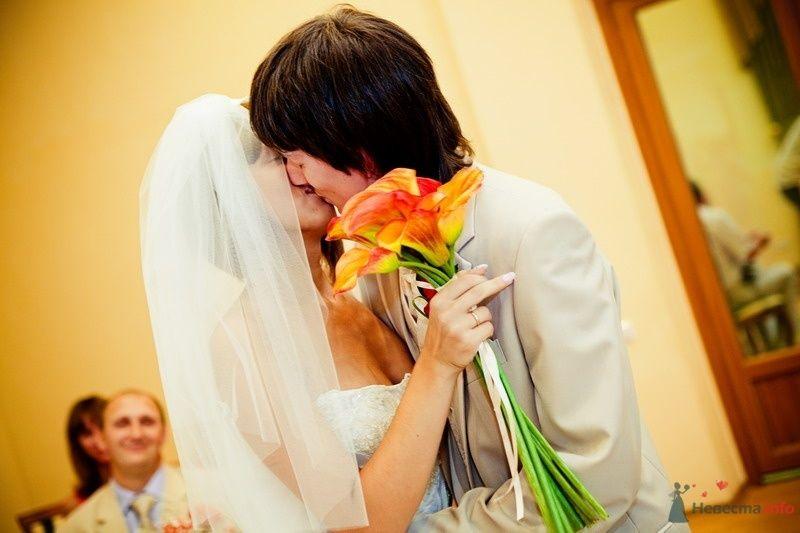 Фото 61795 в коллекции Моя оранжевая свадьба