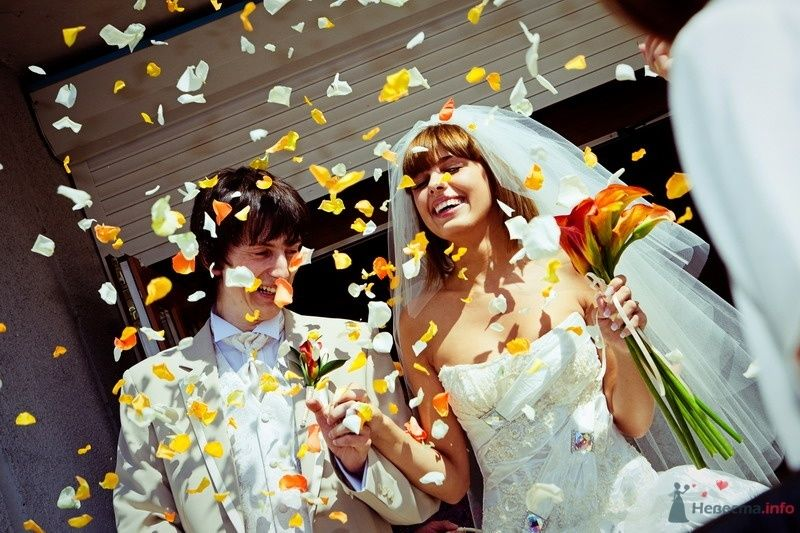 Фото 61797 в коллекции Моя оранжевая свадьба