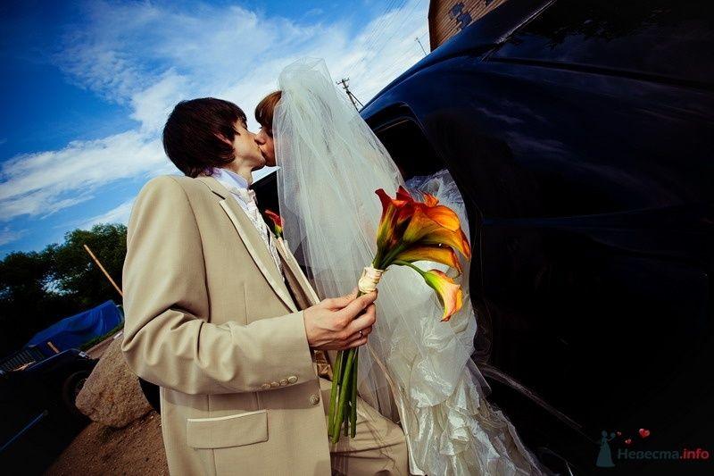 Фото 61925 в коллекции Моя оранжевая свадьба