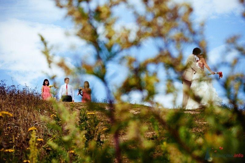Фото 62125 в коллекции Моя оранжевая свадьба - yanechka