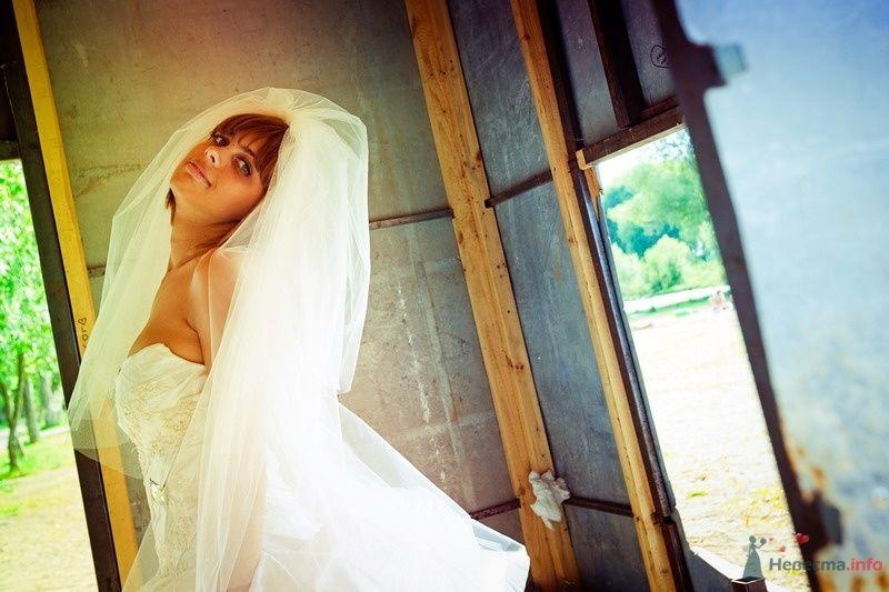 Фото 62161 в коллекции Моя оранжевая свадьба - yanechka