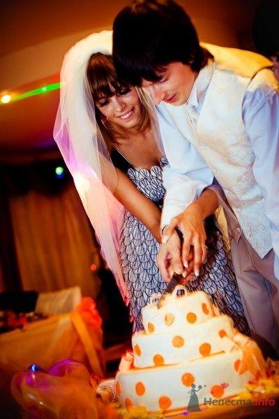 Фото 62790 в коллекции Моя оранжевая свадьба