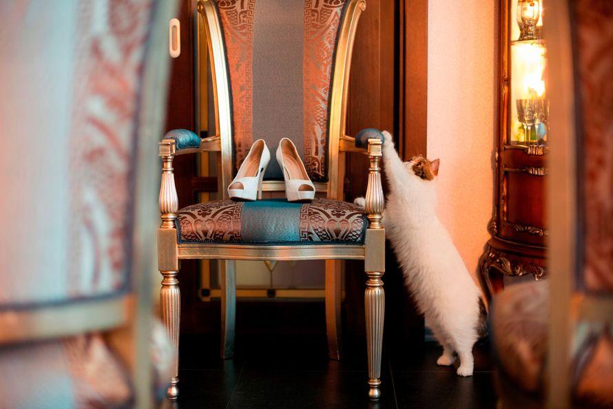 """Фото 16828068 в коллекции Евгений+Ксения - Свадебная студия """"Marry Grand"""""""