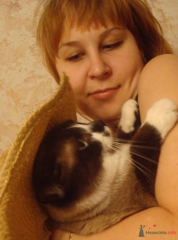 тренируюсь быть мамой... на кошках =) - фото 68292 Симба