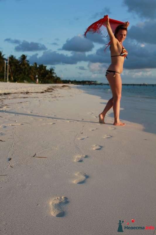 Фото 113747 в коллекции Свадебное путешествие на Мальдивы - Lenysik