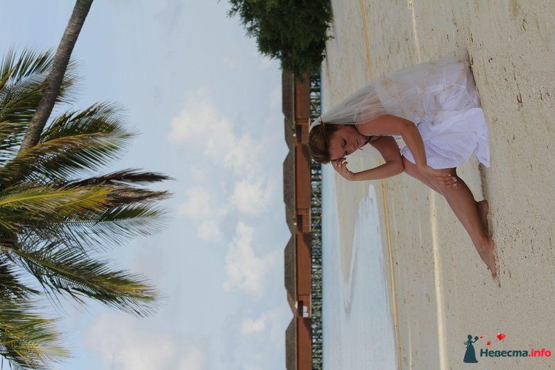 Фото 113760 в коллекции Свадебное путешествие на Мальдивы - Lenysik