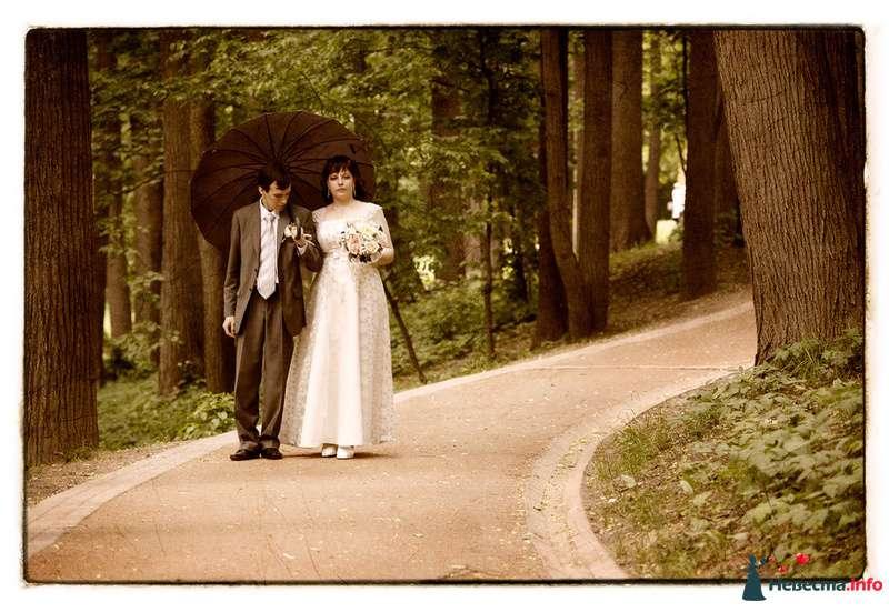 Свадьба Яны и Алексея - фото 91501 Фотографы Тили и Гев