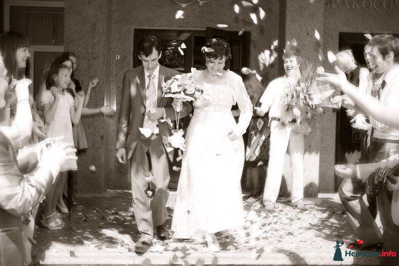 Свадьба Яны и Алексея