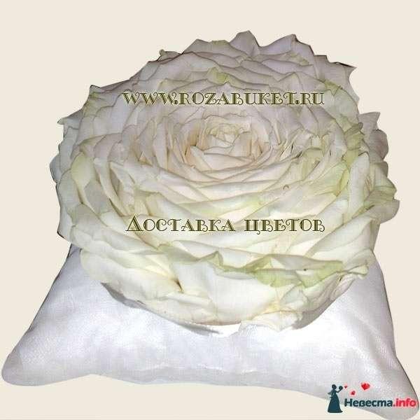 Фото 87276 в коллекции подушечка для колец из живых цветов - ВаленТинка:)