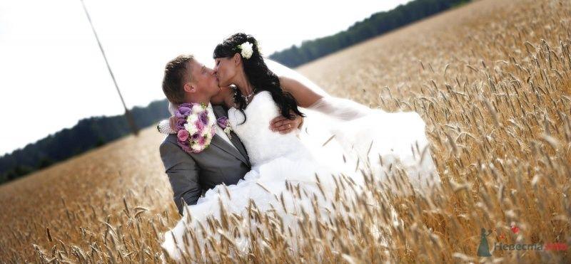 Жених и невеста целуются в пшеничном поле - фото 46886 Elvyra25