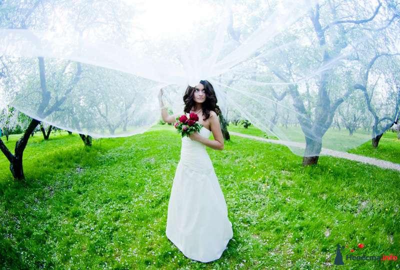 Фото 103758 в коллекции свадебное лето - Невеста01