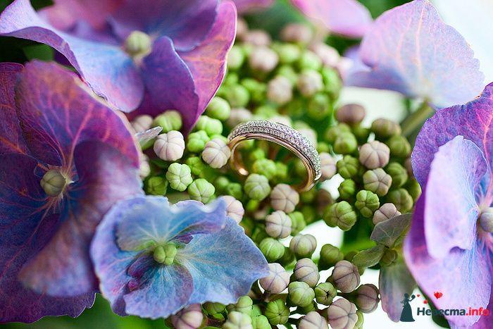 Золотое кольцо с рифленой поверхностью на фоне букетика. - фото 103792 Невеста01
