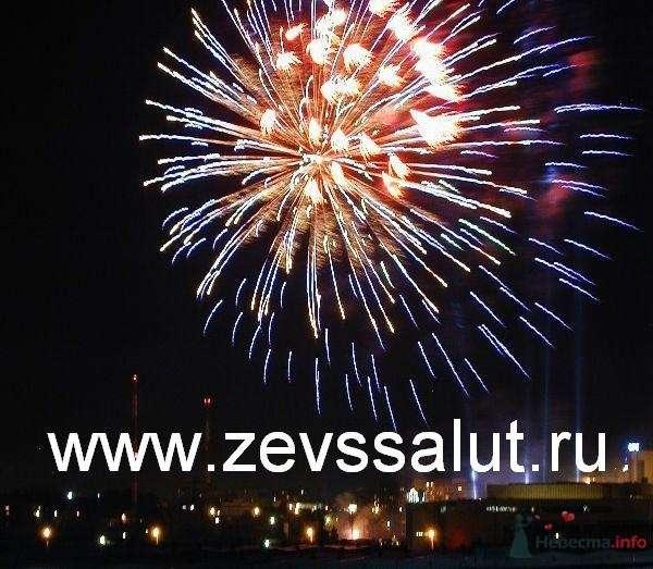 Синий пион переходи в красный с золотой мерцающей сердцевиной - фото 47094 Павел Зевс