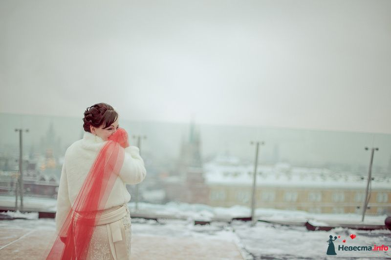 Фото 203572 в коллекции Мои фотографии - Фотограф Анна Овчинникова